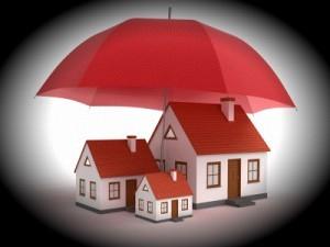 Tampa property investors