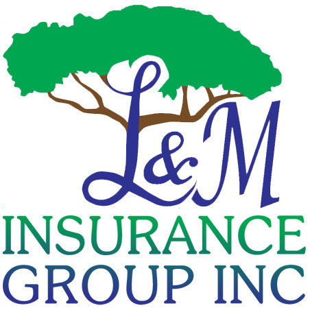 L&M Insurance Group Brandon Florida